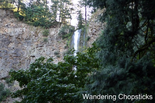 11 Chasing Waterfalls - Columbia River Gorge - Oregon 1