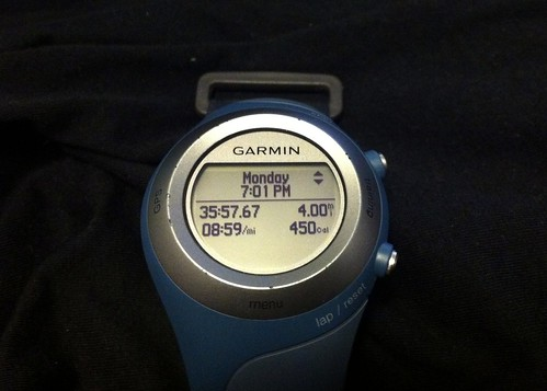 Garmin run for 1/30
