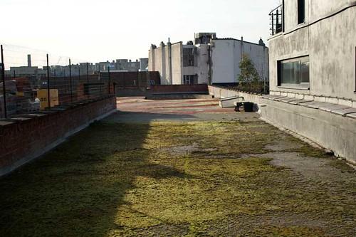 Greenhouse rooftop garden