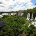 Spidey in Iguazu Falls, Argentina 26JAN12