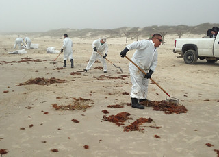 Task force members remove oil-contaminated sand from the beach on the North Padre Island National Seashore, Texas, April 1, 2014. Cleanup operations are being directed by a unified command comprised of personnel from the Texas General Land Office, U.S. Coast Guard and Kirby Inland marine. Photo courtesy of the Unified Command.
