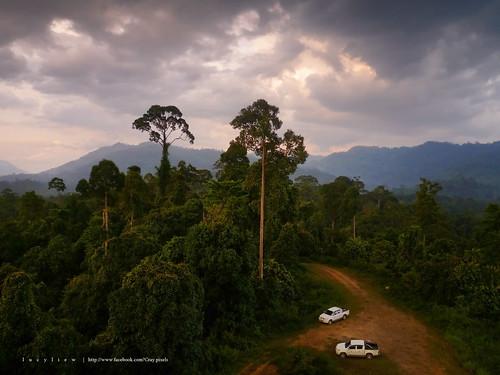 travel forest landscape places adventure jungle borneo sabah