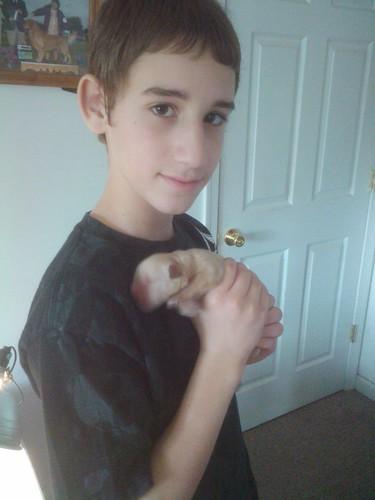Jar & puppy