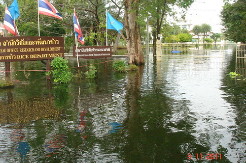 flood situation in Thailand