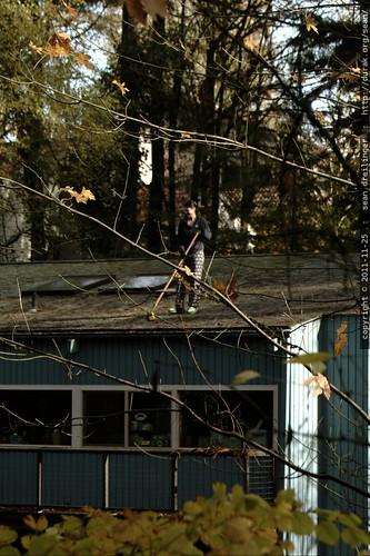 rooftop rachel, sweeping leaves    MG 2627