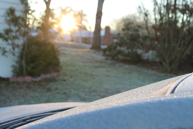 frost_photo2