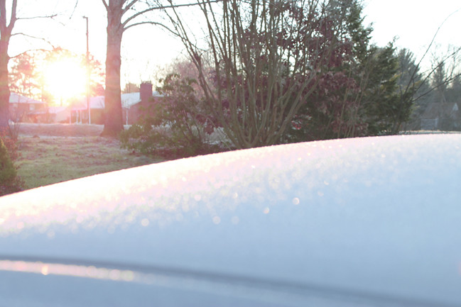frost_photo6