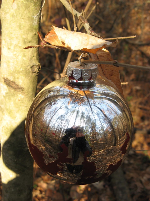 Christmas bulb in the woods