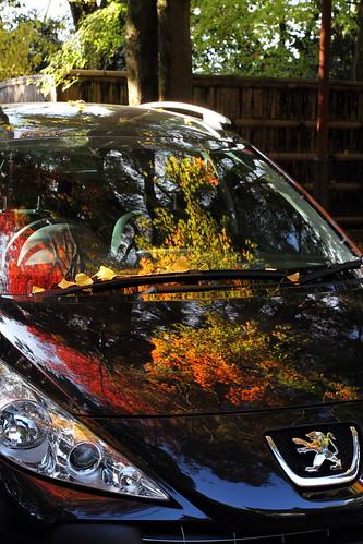 autumn reflection car japan temple kyoto peugeot