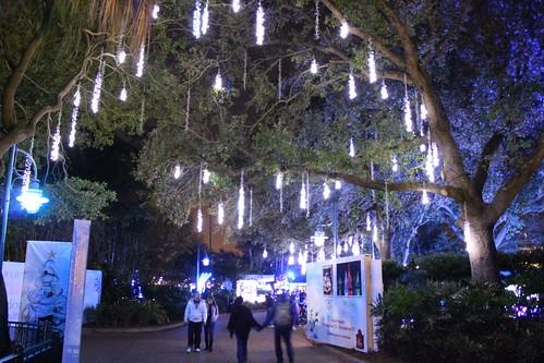 Inside The Seaworld Orlando Christmas Celebration Filling