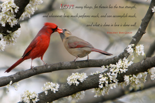 Love Many Things...