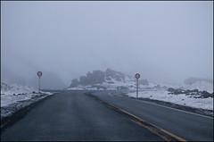 Road to Whakapapa Skifield