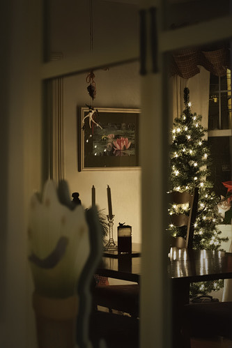 canon 50mm mirror christmastree odt rjoannejohnson