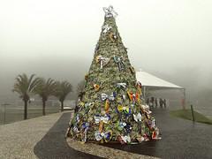 21/12/2011 - DOM - Diário Oficial do Município