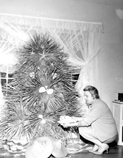 All Florida Christmas tree: Tallahassee, Florida