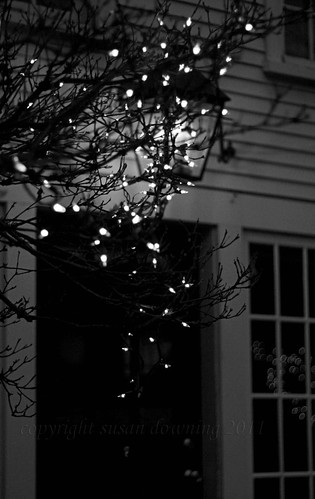 String of Lights BW