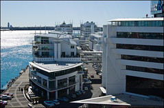 Auckland Viaduct Hilton Hotel