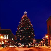 The Christmas tree in downtown Traverse City.