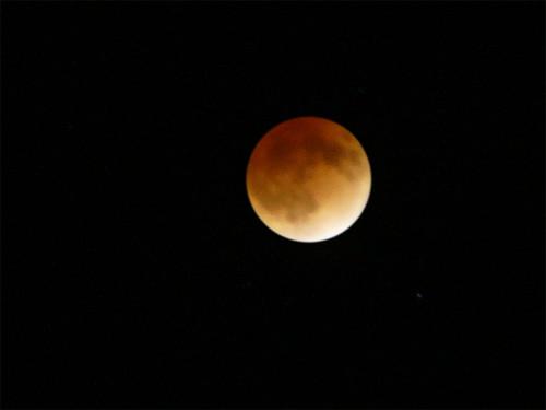 オレンジ色に染まったお月さま