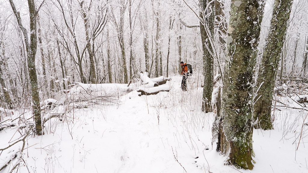 Appalachian Trail, Backpacking, hiking, camping, nature, photography, Tennessee, Snow