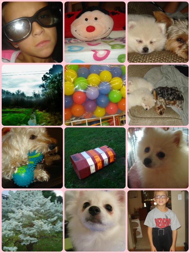 Karli's Collage - #1