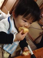 実家で焼きたてパンを食べるとらちゃん