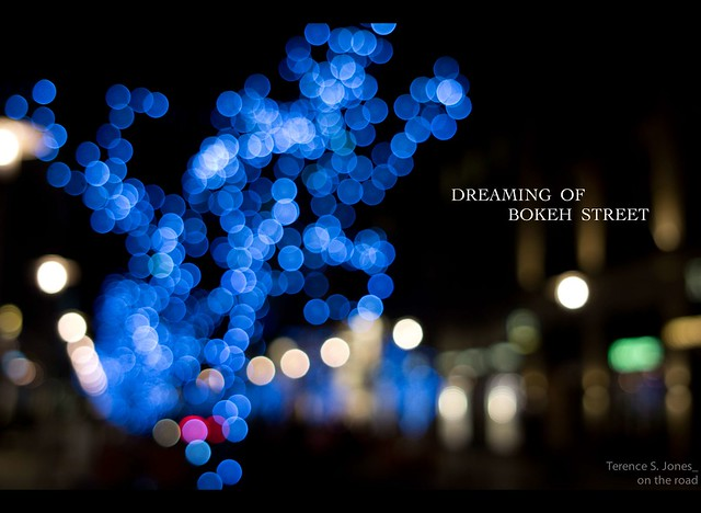 dreaming of bokeh street