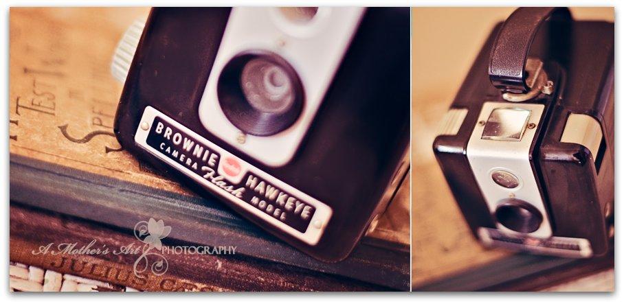 Camera Diptych