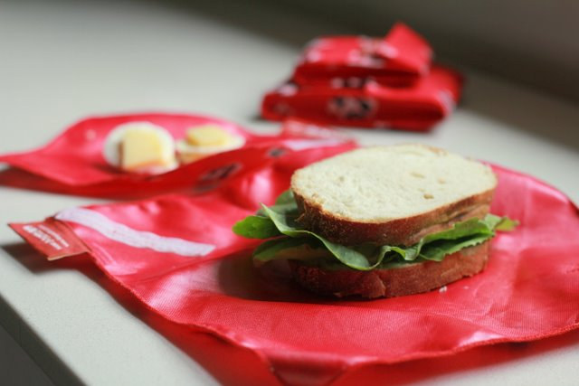 4MyEarth sandwich wrap and snack wrap