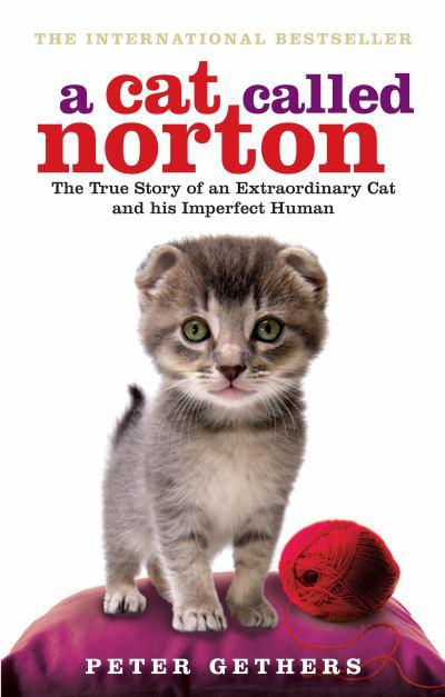 a-cat-called-norton-the-true-story-of-an-extraordinary-cat-and-his-imperfect-human