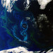 Earth from Space: A southern summer bloom by europeanspaceagency
