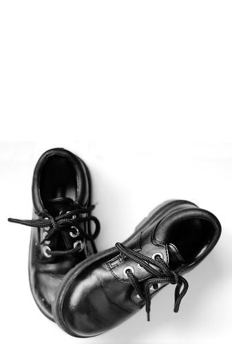 Little Man Shoes