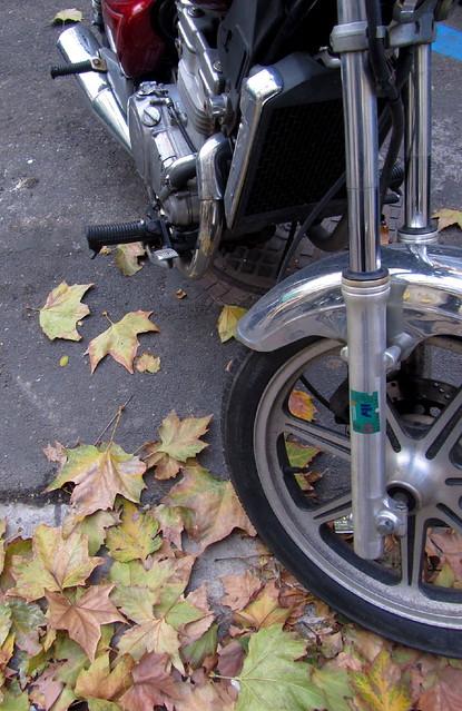 Mi moto, veinte años después