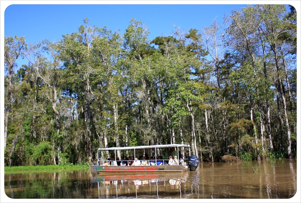 swamp boat tour louisiana