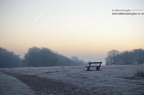 Richmond Park crips winter sunrise