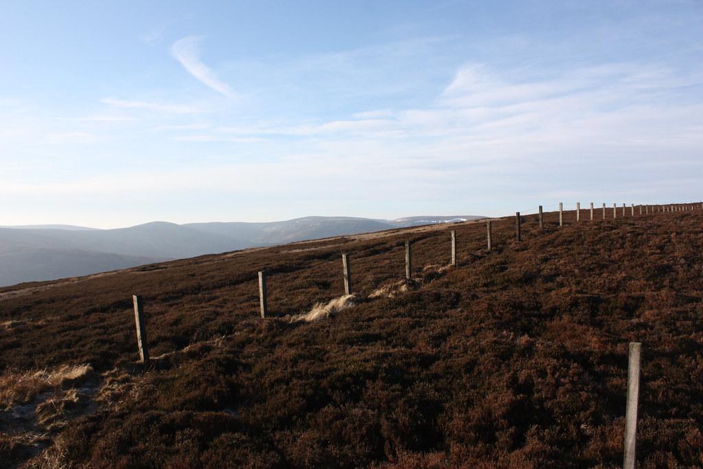 Fences above Glen Lethnot