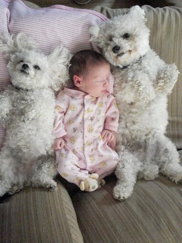 kids and pets.jpg 10