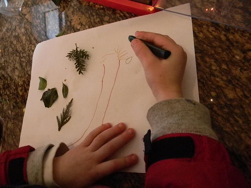 drawing winter leaves