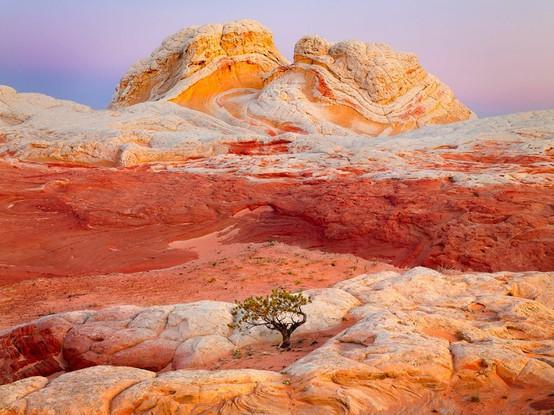 beautiful rocks_020