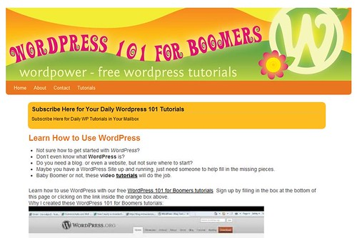 Wordpress 101 for Boomers by totemtoeren