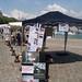 BSC 2006/06/17 La Rochelle