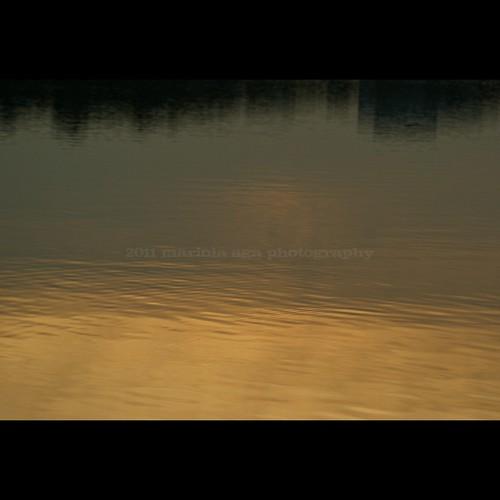 park sunset summer sky abstract reflection nature water square golden evening pond shoreline surface schaumburg tones thegalaxy bussewoodsforestpreserve sailsevenseas sailsevenseasmaster