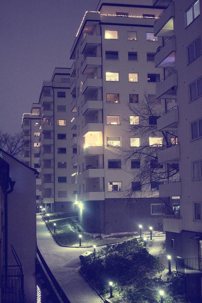 IMG_8461