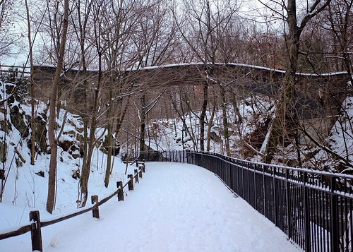 Bronx River Path