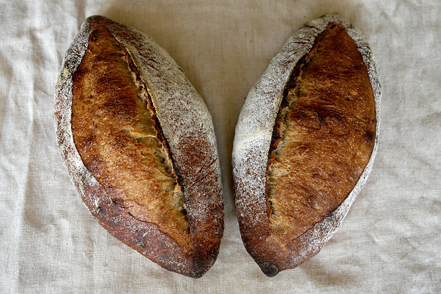 6783649253 64097b4626 z San Joaquin Sourdough   preview