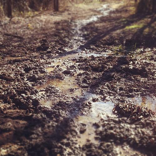 A Mess of a Trail