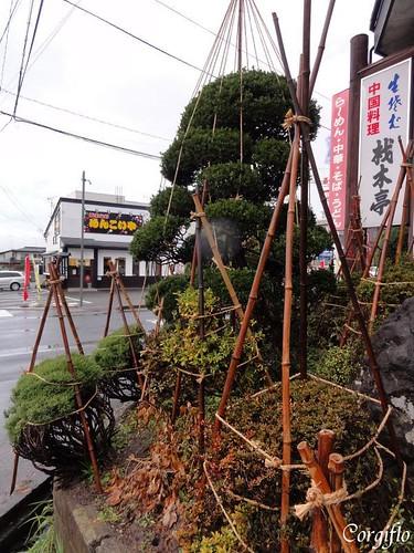 aJARDIN-120201-Yamagata-05-a