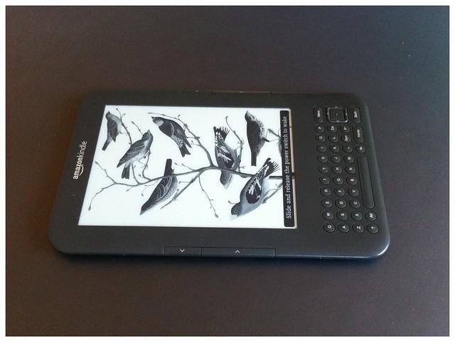 Kindle (ohne Netzteil, reicht dicke für 3 Tage selbst mit Wireless on)