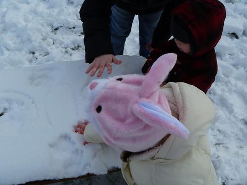 Bunnies in snow