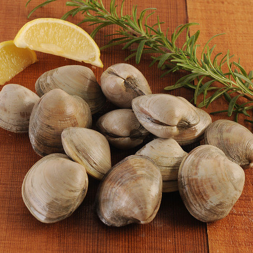 Littleneck Clams (One Dozen)